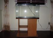 一个 30 加仑 鱼缸